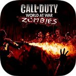 Call of Duty Wor…