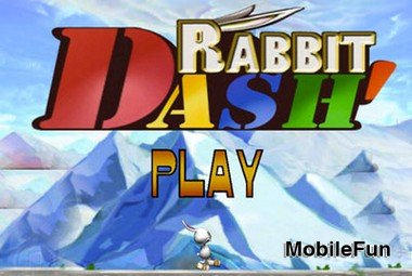 Rabbit Dash (Заячий Рывок)